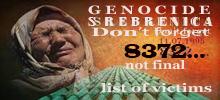 Srebrenicabanner2020.jpg