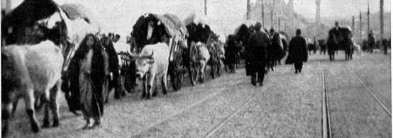 Image result for protjerivanje muslimana iz Srbije